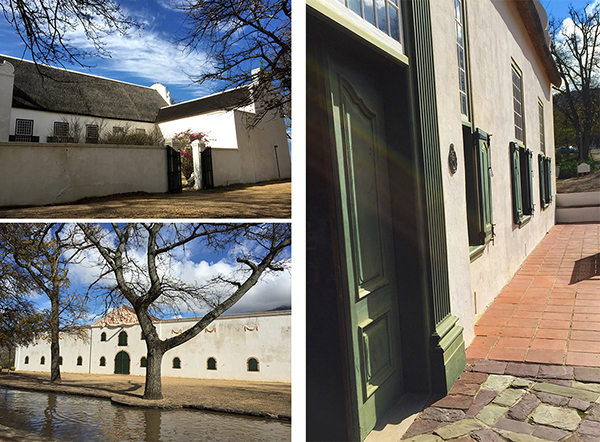 Groot Constantia - Photos by Sharon Warr 2015